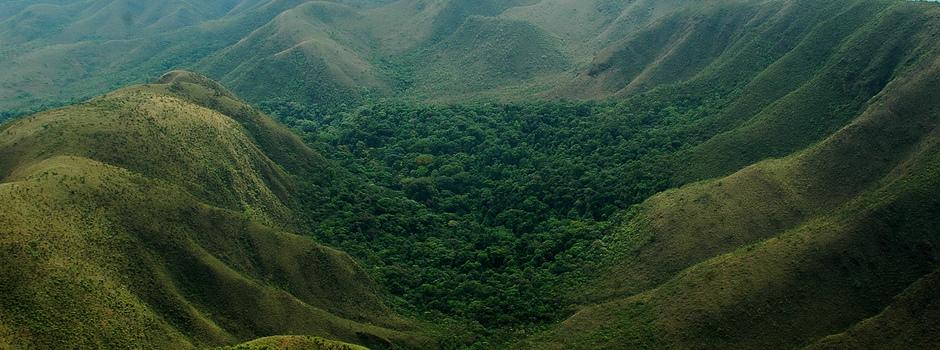 Meio Ambiente em MG