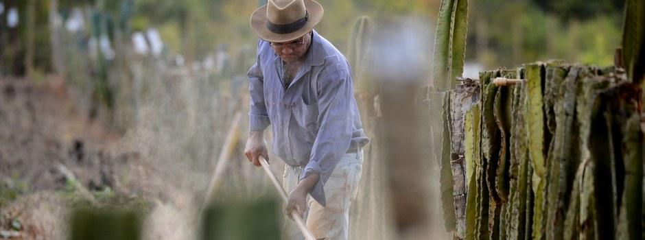 Projeto de Lei enviado à ALMG cria o Plano Estadual de Enfrentamento da Pobreza no Campo